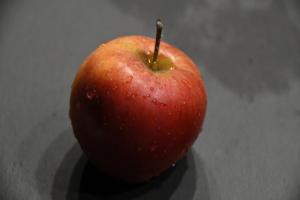 Apfelbaum 'Gala'