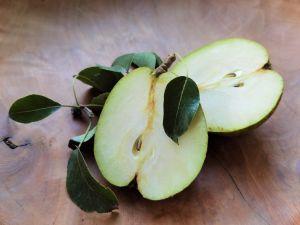 Minibaum 'Garden Pearl'